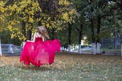 Meisje in rood in de herfstpark stock foto