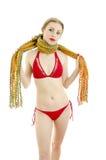 Meisje in seksuele de winteruitrusting. Stock Afbeeldingen