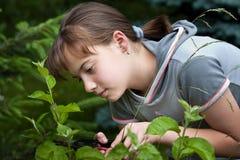 Meisje in tuin royalty-vrije stock foto