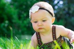 6 Meisje van de maand het Oude Baby in openlucht Stock Afbeeldingen