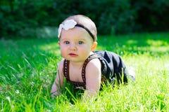 6 Meisje van de maand het Oude Baby in openlucht Stock Foto's