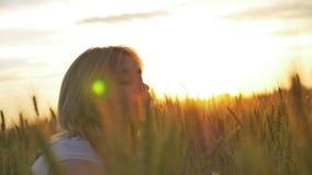 Meisje van gouden tarwe in de zon wordt geschoten die stock videobeelden