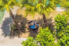 Meisje in zonlanterfanters onder palmen dichtbij het zwembad royalty-vrije stock afbeeldingen
