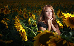 Meisje in zonnebloemen Royalty-vrije Stock Fotografie