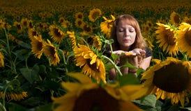 Meisje in zonnebloemen Stock Afbeelding