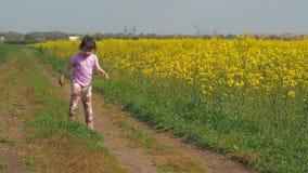 Meisjelooppas in de weide De kindlooppas op een landweg Een gelukkige kindlooppas in gele bloemen Koolzaad, Canola, Biodieselgewa stock videobeelden