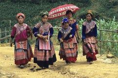 Meisjes 1 van Hmong van de bloem stock fotografie