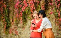 Meisjes communiceren die telefoon bekijken Sociaal netwerkenconcept Twee vrouwen die met smartphone in openlucht communiceren sha royalty-vrije stock afbeeldingen