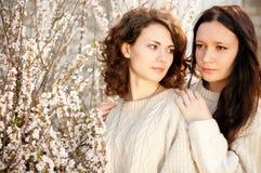 Meisjes in de lentelelietje-van-dalen stock foto's