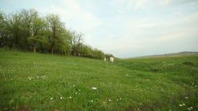Meisjes die de weide lopen dichtbij het bos stock video