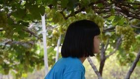 Meisjes die in de wijngaard lopen stock videobeelden