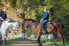 Meisjes die een paard berijden Stock Foto's