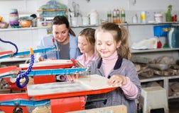 Meisjes die hun vaardigheden uitoefenen bij houtsnijwerk Stock Fotografie
