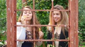 Meisjes die Luchtbellen blazen stock video