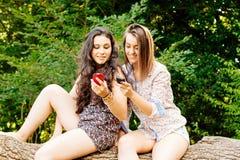 Meisjes die op een boomstam zitten die hun mobiele telefoons met behulp van Stock Foto