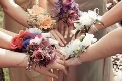 Meisjes die Prom-Corsages dragen royalty-vrije stock foto's