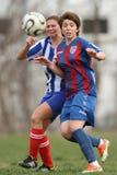 Meisjes die voor bal tijdens voetbalspel vechten Royalty-vrije Stock Fotografie