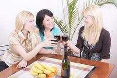 Meisjes die wijn drinken en pret hebben Stock Fotografie