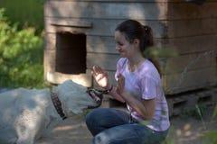 meisjes donkerbruine tiener met Centrale Aziatische herdershond royalty-vrije stock afbeelding
