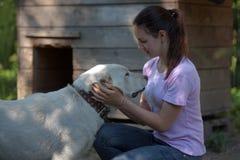 meisjes donkerbruine tiener met Centrale Aziatische herdershond royalty-vrije stock fotografie
