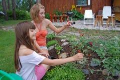 Meisjes en alpin bloemen Royalty-vrije Stock Afbeeldingen