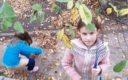 Meisjes met de herfstbladeren Stock Fotografie