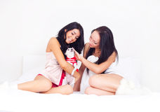 Meisjes met een hond Royalty-vrije Stock Afbeeldingen