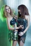 Meisjes met metaalbelemmeringen Royalty-vrije Stock Fotografie