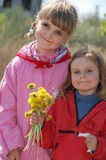 Meisjes met paardebloemen Stock Foto