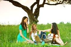 Meisjes op picknick Royalty-vrije Stock Afbeeldingen