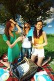 Meisjes op picknick Stock Fotografie