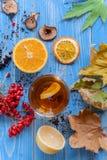 Meisjes` s handen die een mok hete thee clutching de herfstconceptie Huis royalty-vrije stock foto's