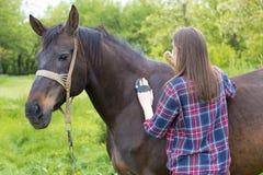 Meisjes verzorgend paard Royalty-vrije Stock Foto