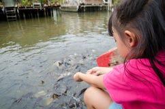 Meisjes voedende vissen Stock Afbeelding