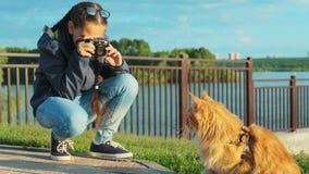 Meisjesfotograaf die een beeld van zijn huisdier, een mooie kat nemen stock videobeelden