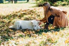 meisjesgangen bij de herfstpark met jonge witte Zwitserse herdershond stock foto's
