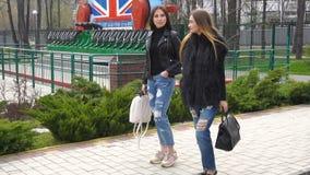 Meisjesgangen in het Park stock video