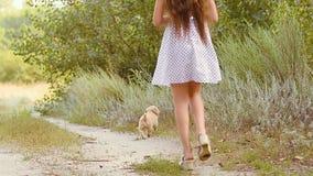 Meisjeslooppas met een puppy op de weg stock video
