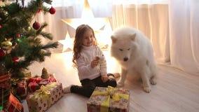 Meisjespelen met een hond dichtbij een Kerstboom stock footage