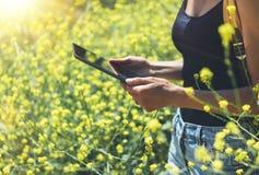 Meisjesreiziger die gadget op gele bloemenachtergrond dicht gebruiken De vrouwelijke handenfotograaf neemt de gloed van de mening royalty-vrije stock afbeelding