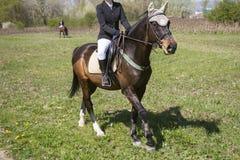 Meisjesruiter en paard royalty-vrije stock fotografie