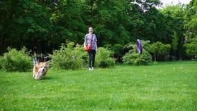 Meisjesspelen met de hond bij het park stock videobeelden
