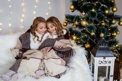 Meisjestweelingen voor de spar royalty-vrije stock fotografie