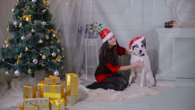 Meisjeszitting met hond dichtbij Kerstmisboom stock videobeelden