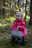 Meisjezitting op een stomp in het hout met een mand Royalty-vrije Stock Fotografie