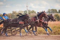 Meisterschaft der Russland-Russe-Troika Lizenzfreies Stockfoto