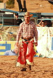 Meisterschaft Stiers Rider From The European Rodeo Stockfoto