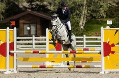 Meisterschaft von Ukraine auf equestri Stockbilder