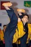 Meisterschaft WTF Welttaekwondo-Poomsae Lizenzfreie Stockbilder