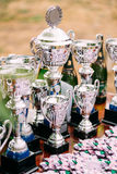 Meistertrophäen Siegercups trophäe Lizenzfreies Stockfoto